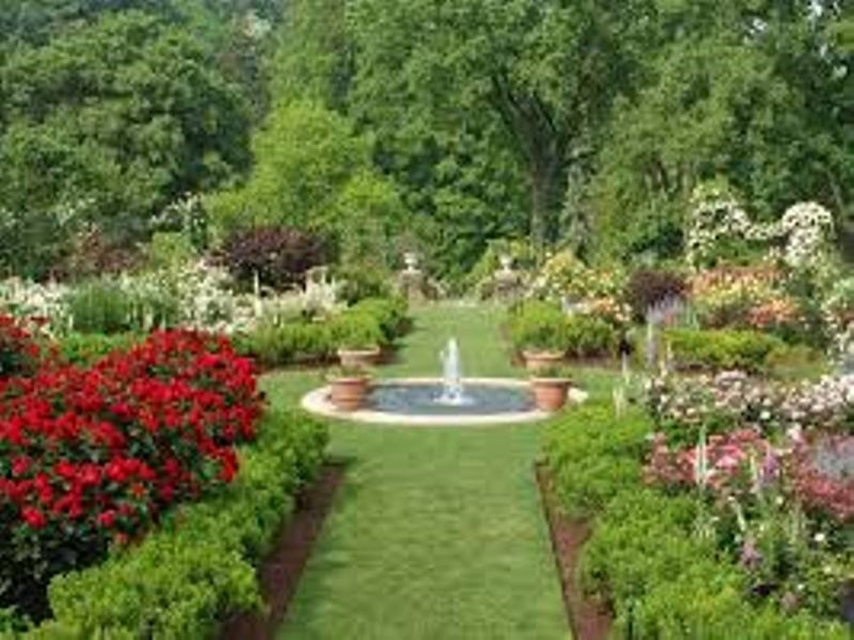 Two Gardens